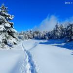 Зимний поход на Ай-Петри